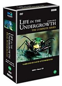 살아있는 곤충의 세계 (5disc)