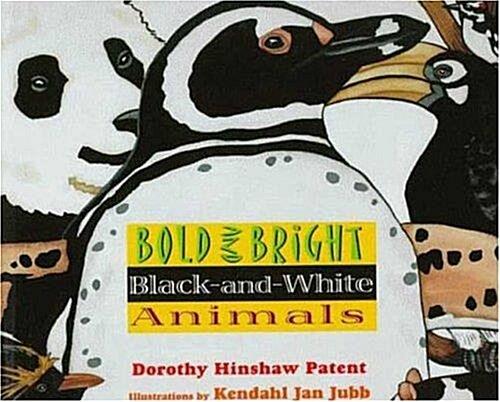 [중고] Bold and Bright Black-and-White Animals (Paperback)