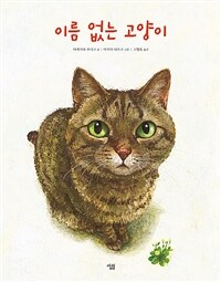 이름 없는 고양이