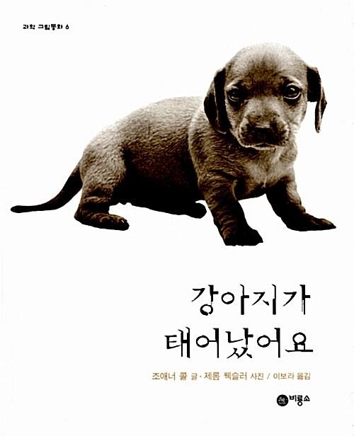 강아지가 태어났어요