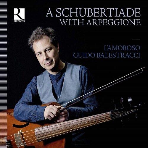 [수입] 아르페지오네로 연주하는 슈베르트 아르페지오네 소나타