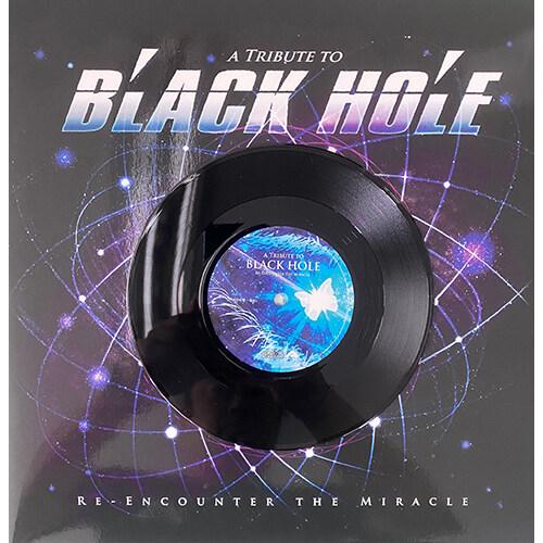 블랙홀 데뷔 30주년 기념 헌정음반 [180g 12+7 LP]