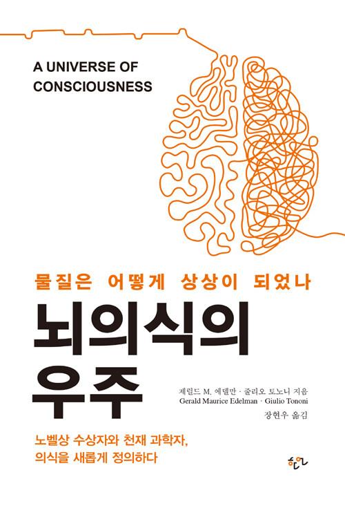 뇌의식의 우주 : 물질은 어떻게 상상이 되었나