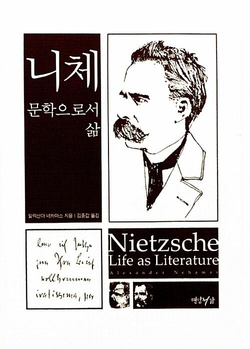 니체: 문학으로서 삶