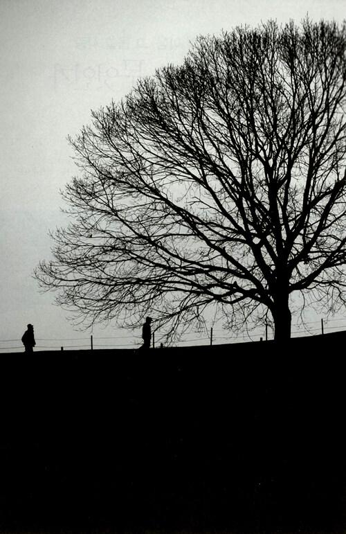 情이란 무엇인가 : 한국인의 마음, 그 몹쓸 사랑 2판
