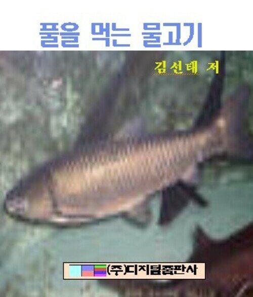 풀을 먹는 물고기