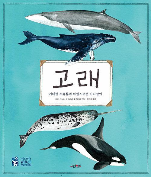 고래 : 거대한 포유류의 비밀스러운 바다살이