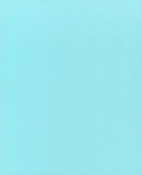 도나 헤이 더 뉴 클래식 : 도나 헤이 매거진이 엄선한, 모던 쿡을 위한 클래식 레시피의 결정판
