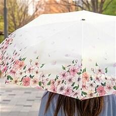 [김이랑 x 알라딘] 벚꽃 우산
