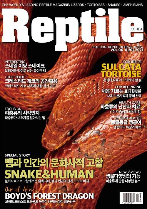 Reptile 렙타일 2021.1.2 (한국판)