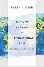 The New Terrain of International Law: Courts, Politics, Rights (Paperback)