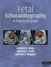 Fetal echocardiography : a practical guide