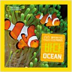 내셔널지오그래픽 키즈 빅북 : 바다
