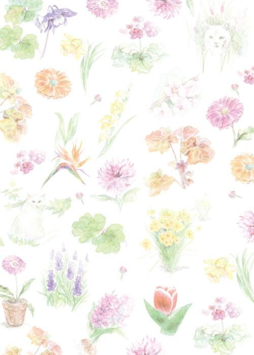 요망진 식물집사 : 사계절, 자연 색에 물들어 살다