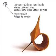 [수입] 바흐: 칸타타 BWV45, BWV198 & 모테트 BWV118