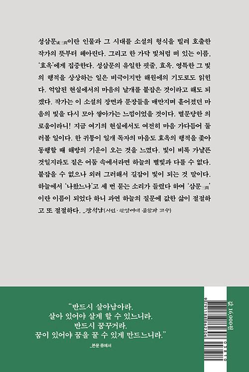 효옥 : 노비가 된 성삼문의 딸 : 전군표 장편소설