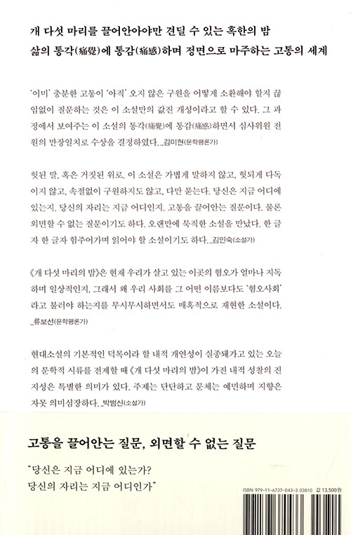 개 다섯 마리의 밤 : 채영신 장편소설