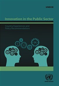 Innovation in the public sector : country experiences and policy recommendations