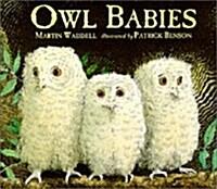 Owl Babies (Board Book, New ed)