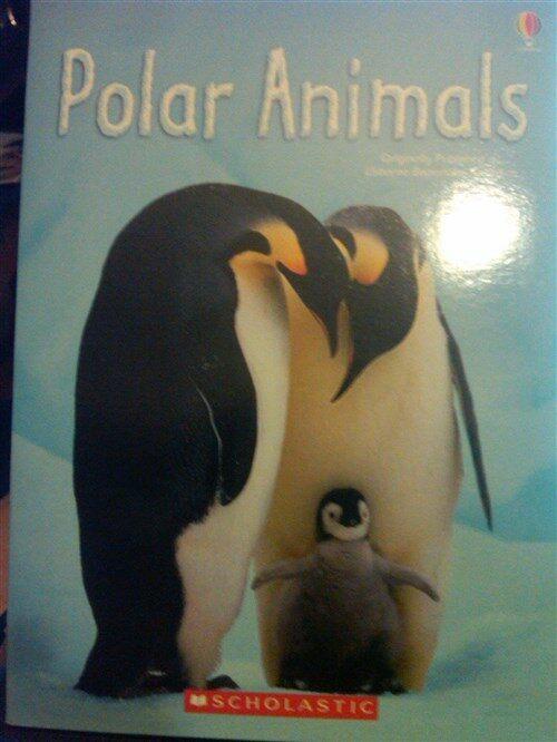 [중고] Polar Animals (Usborne Beginners, Information for young readers - LEVEL 1) (pb)