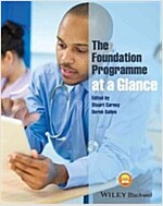 The Foundation Programme at a Glance (Paperback)