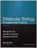 Molecular Biology : Principles And Practice (Paperback)