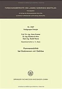 Flammenstabilitat Bei Gasbrennern Mit Geblase (Paperback, 1976)