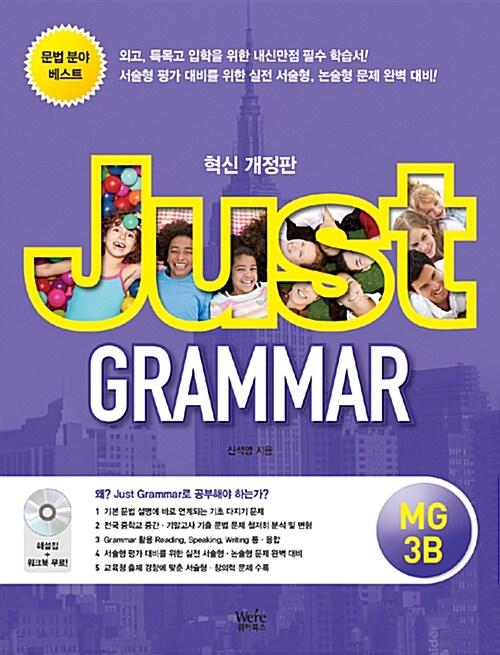 Just Grammar MG 3B