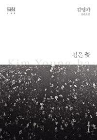 검은 꽃 - 김영하 장편소설