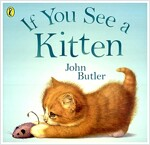 If You See a Kitten (Paperback)