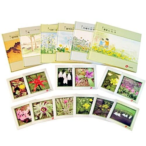 자연친화교육을 위한 풀꽃 그림책 세트 - 전6권