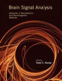 Brain signal analysis : advances in neuroelectric and neuromagnetic methods