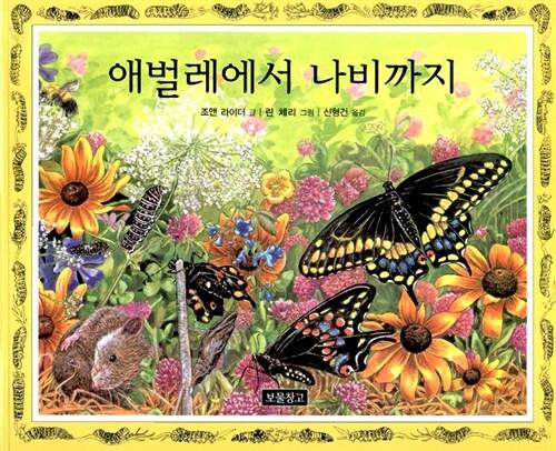 애벌레에서 나비까지