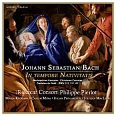 [수입] 바흐 : 강림절, 크리스마스 칸타타집 BWV 110, BWV 151, BWV 63