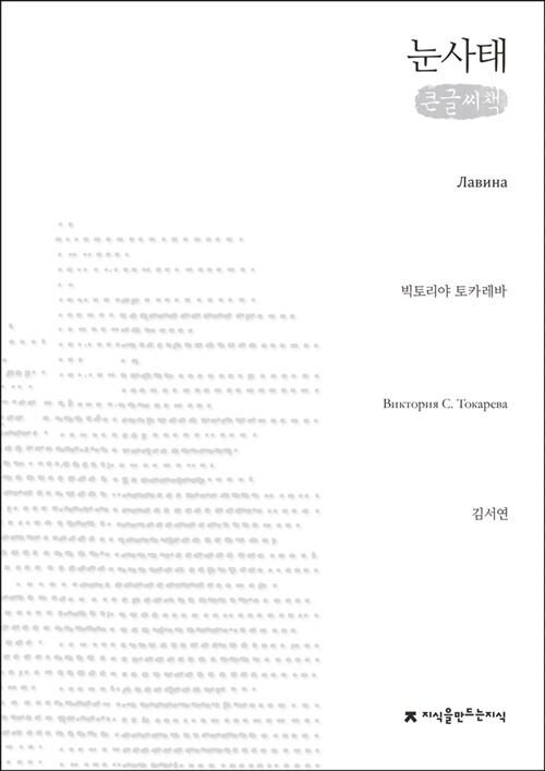 눈사태 (큰글씨책)
