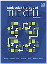 Molecular Biology of the Cell (Paperback, 6th, Revised)