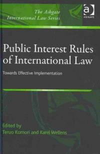 Public interest rules of international law : towards effective implementation