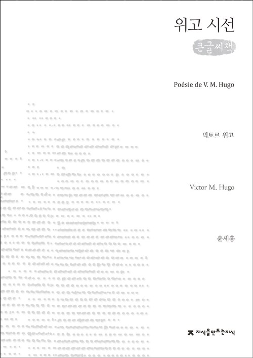 위고 시선 (큰글씨책)