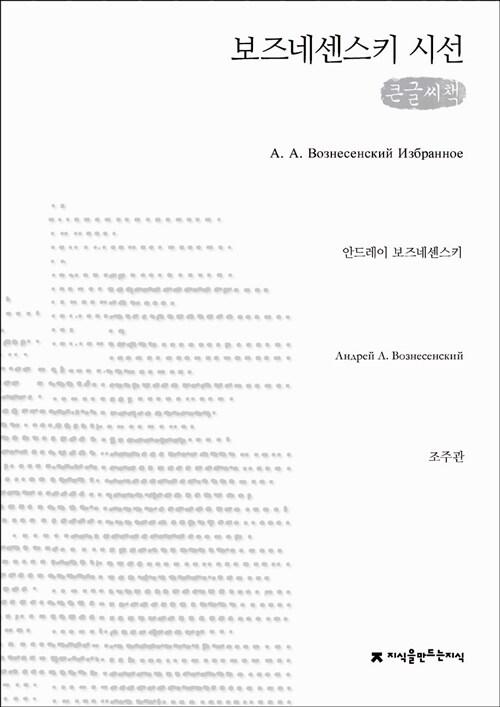 보즈네센스키 시선 (큰글씨책)