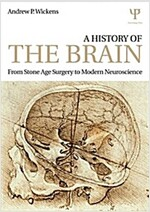 A History of the Brain : From Stone Age Surgery to Modern Neuroscience (Paperback)