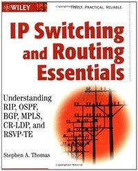 IP switching and routing essentials : understanding RIP, OSPF, BGP, MPLS, CR-LDP, and RSVP-TE