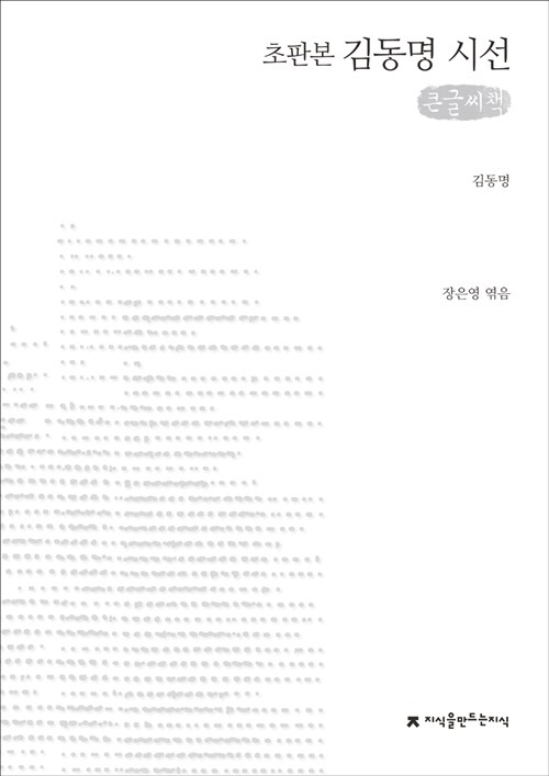 김동명 시선 (큰글씨책)