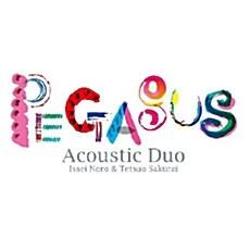 [수입] Pegasus - Acoustic Duo