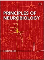 Principles of Neurobiology (Paperback)