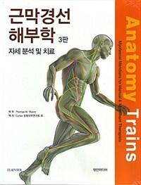 근막경선 해부학