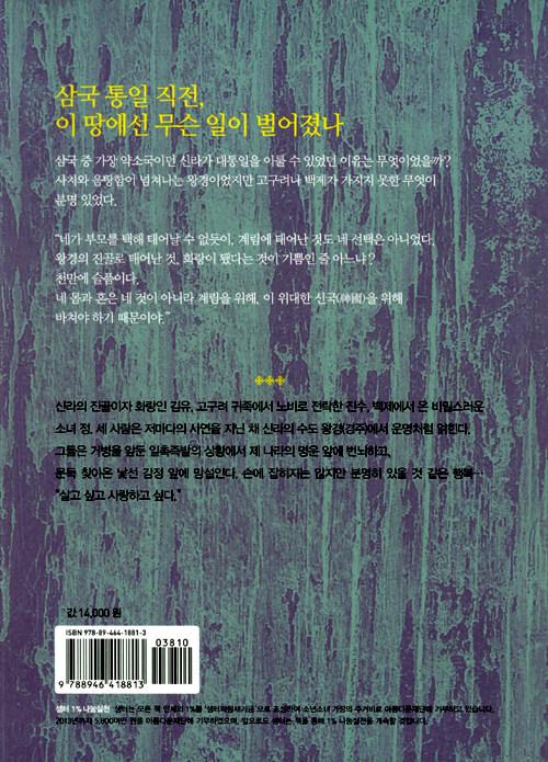 왕경 : 손정미 역사소설
