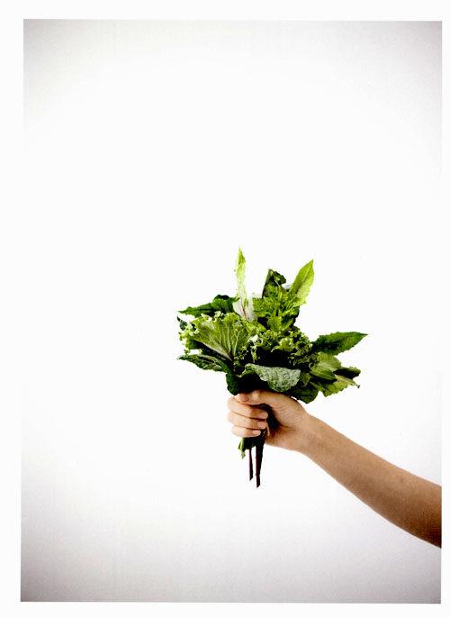 주스 클렌즈 : 마시는 단식 ★ 맛있는 디톡스 ★ 건강한 다이어트