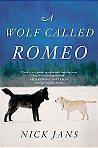 A Wolf Called Romeo (Paperback)