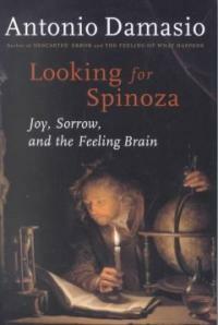 Looking for Spinoza : joy, sorrow, and the feeling brain 1st Harvest ed