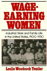 Wage-earning women : industrial work and family life in the United States, 1900-1930